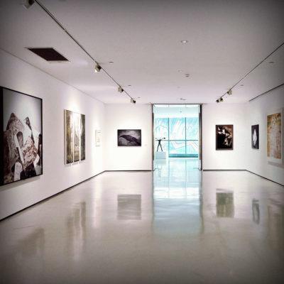 Artists & Photographers